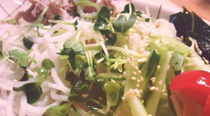 お好みサラダ麺
